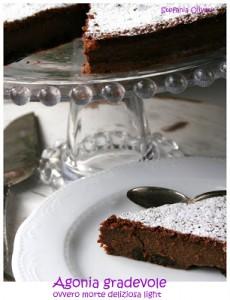 torta cioccolato e uvetta light - Cardamomo & co