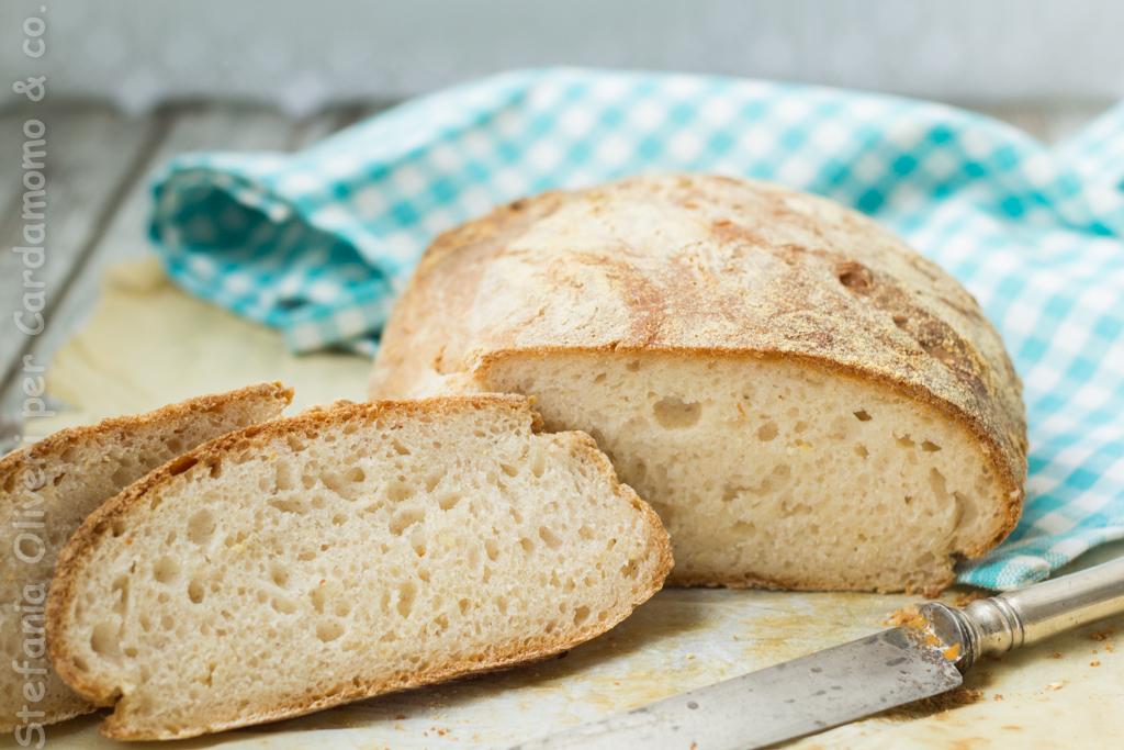 Pane senza glutine con lievito madre
