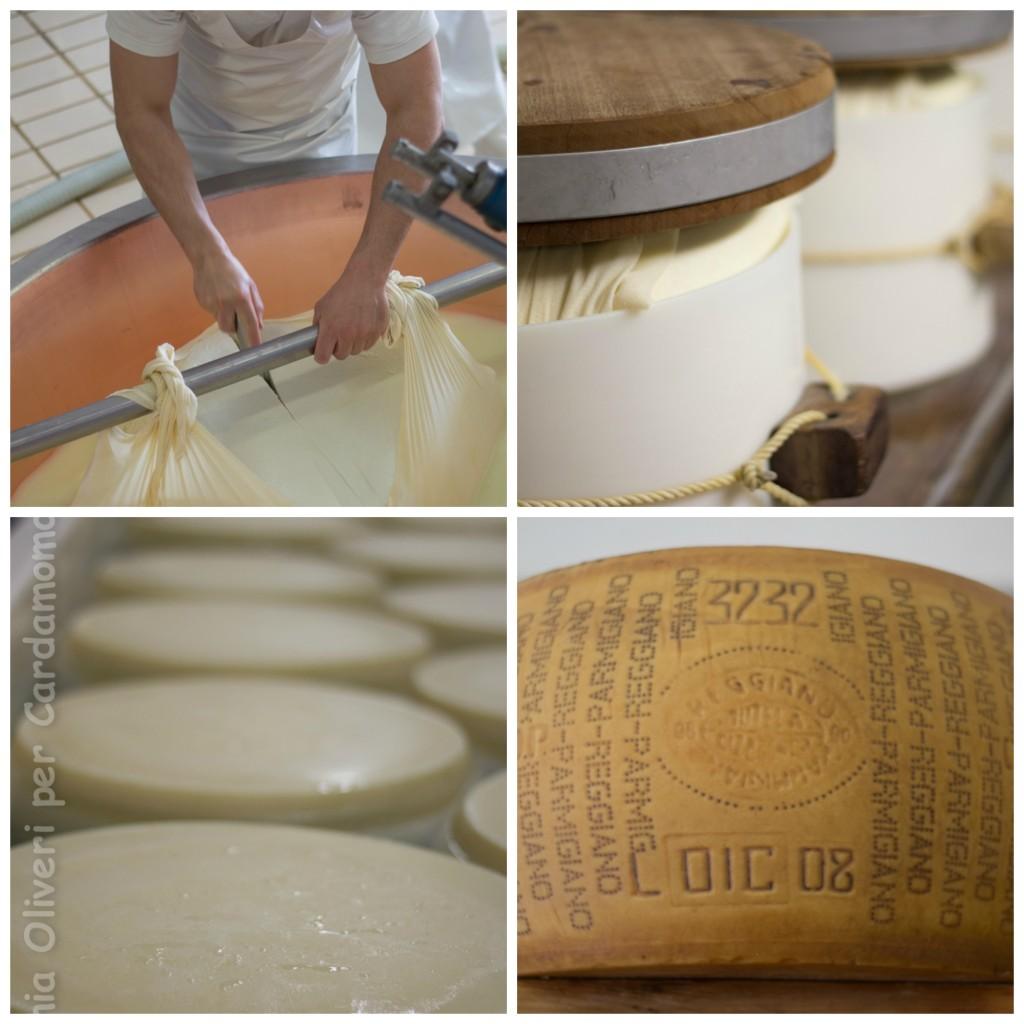 Parmigiano Cardamomo & co