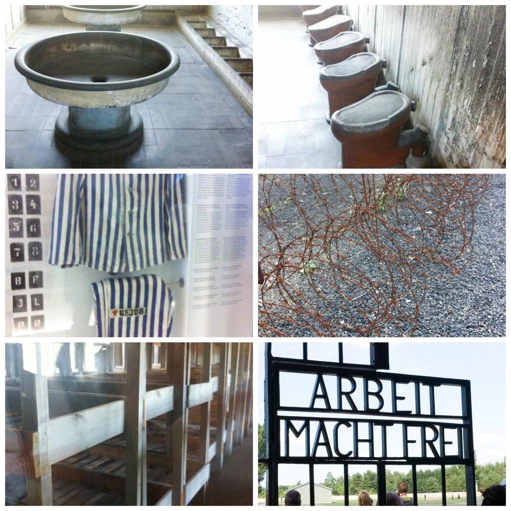Sachsenhausen Cardamomo and co